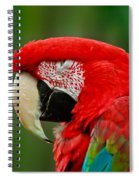 Dont You Dare To Stare Macaw Spiral Notebook