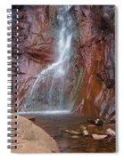 Dorothy Falls 2 Spiral Notebook