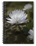 Double Bloodroot Spiral Notebook