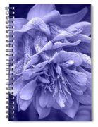 Double Columbine In Blue Spiral Notebook