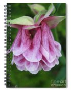 Double Columbine Named Pink Tower Spiral Notebook