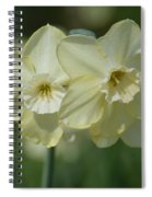 Double Cream Delights Spiral Notebook