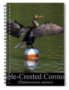 Double Crested Cormorant Spiral Notebook