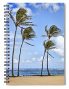 Double Double Spiral Notebook