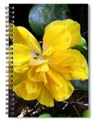 Double Hibiscus Costa Rica Spiral Notebook