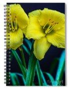 Double Pleasure Spiral Notebook