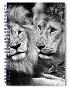 Double Power Spiral Notebook