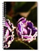 Double Ruffle Spiral Notebook
