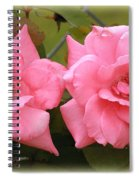 Double Take Spiral Notebook