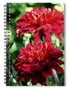 Doubled Red Mums Spiral Notebook