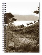 Douglas School For Girls At Lone Cypress Tree Pebble Beach 1932 Spiral Notebook