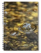 Down By The Bubbling Spring Spiral Notebook