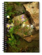 Down By The Creek Spiral Notebook