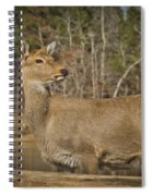 Down By The Duck Pond Spiral Notebook