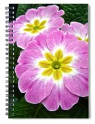 Down On Primrose Lane Spiral Notebook