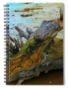 Down On The Beach Spiral Notebook
