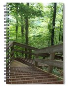 Down The Mountain Spiral Notebook