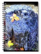 Down To Earth Beauty Spiral Notebook
