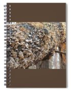 Down Tree Spiral Notebook