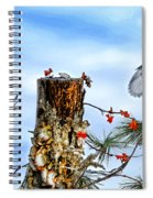 Downy And Titmouse Playing On Lichen Stump Spiral Notebook
