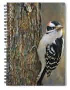 Downy Woodpecker Spiral Notebook