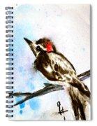 Downy Woodpecker Sumi-e Spiral Notebook