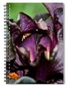 Dracula's Flower Spiral Notebook