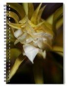 Dragon Flower Spiral Notebook