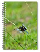 Dragon Fly 5 Spiral Notebook
