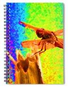 Dragon Fly- Creative Spiral Notebook
