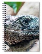 Dragon Lizzard Portrait Closeup Spiral Notebook