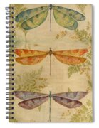 Dragonflies Among The Ferns-12415 Spiral Notebook