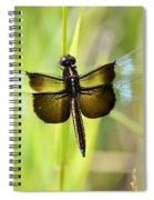 Dragonfly 9249 Spiral Notebook