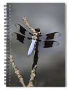 Dragonfly Common Whitetail Spiral Notebook