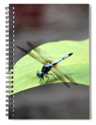 Dragonfly Dimernsions II Spiral Notebook