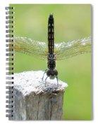 Dragonfly Doing A Handstand Spiral Notebook