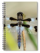 Dragonfly Spiral Notebook
