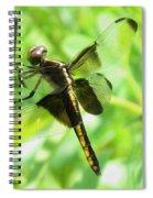 Dragonfly Female Widow Skimmer Spiral Notebook