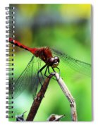 Dragonfly Hard At Work Spiral Notebook