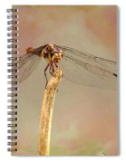 Dragonfly In Fantasy Land Spiral Notebook
