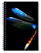 Dragonfly - Insect  7128-005 Spiral Notebook