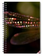 Dragonfly Jewels Spiral Notebook