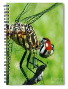 Dragonfly Spiral Notebook
