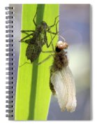 Dragonfly Metamorphosis - Fifth In Series Spiral Notebook