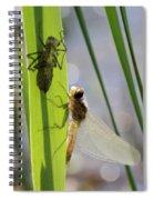 Dragonfly Metamorphosis - Seventh In Series Spiral Notebook