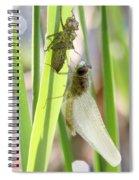Dragonfly Metamorphosis - Sixth In Series Spiral Notebook