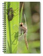 Dragonfly Metamorphosis - Tenth In Series Spiral Notebook