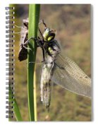 Dragonfly Newly Emerged - Second In Series Spiral Notebook