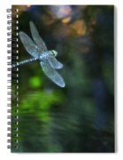 Dragonfly No 1 Spiral Notebook