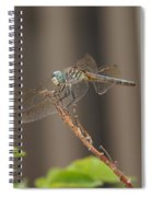 Dragonfly Profile Spiral Notebook